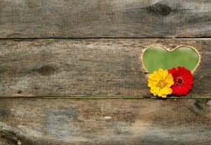 Gratitude in Relationships